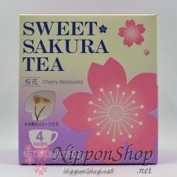 Sweet Sakura Cherry Blossoms