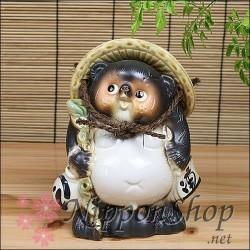 male Tanuki